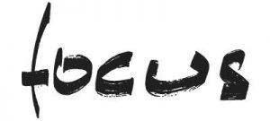 Focus Fireplaces Logo