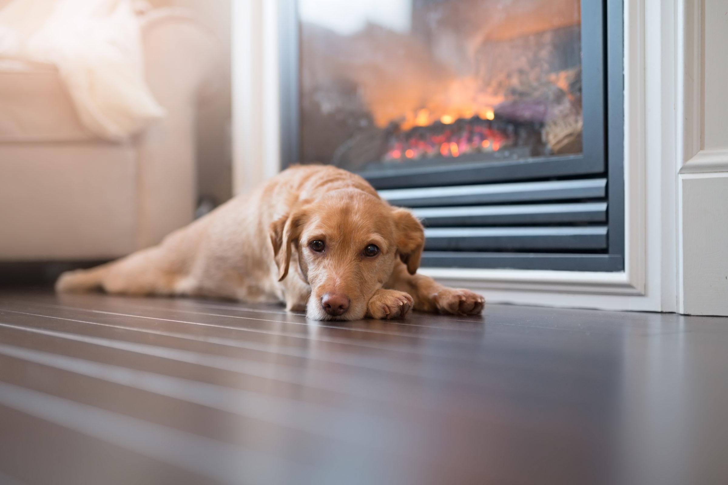 Enjoying the heat - clean air